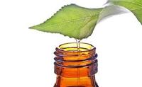 gli olii essenziali