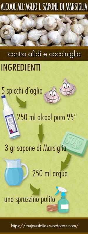 ALCOOLAGLIO